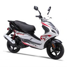 Wolfbrand Scooter Brand Blaze