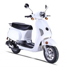 Wolfbrand Wholesale Scooter Brand-wolf lucky
